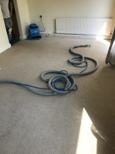 Carpet Cleaning Weedon