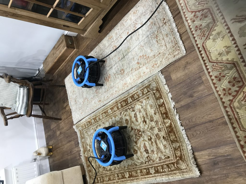 Rug Cleaning Daventry