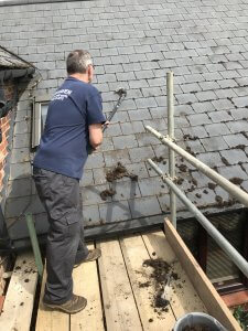 Moss Removal from Roofs