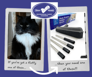 How to remove pet hair